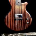 PMC Guitares Waukesha
