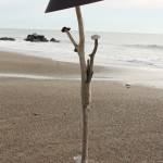 PHOTOS LAMPES PLAGE 03 007