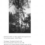 Invitation CerCles Confondus Lise Chevalier _Page_4